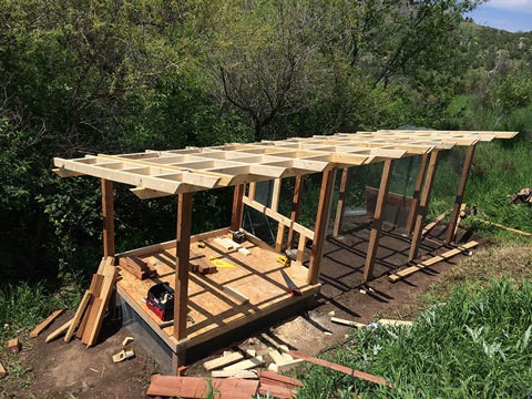 Framed Columns and Roof-Prep for Chicken Coop and Run