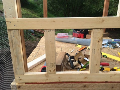 Framing the Internal Wall for Chicken Coop